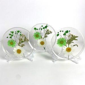 Set Of 3 Resin Dried Flowers Petri Dish Coasters